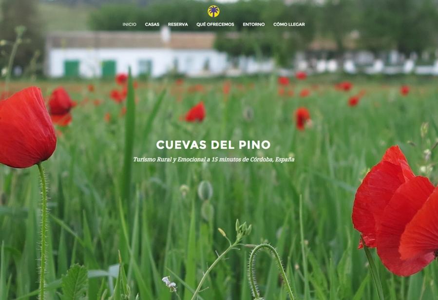 Web Cuevas del Pino